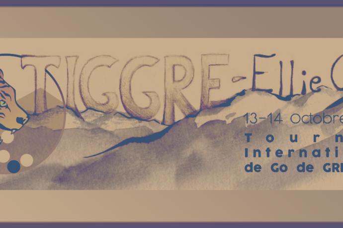 Tournoi jeu de go Tiggre Grenoble 2018